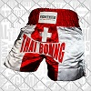 FIGHTERS - Muay Thai Shorts / Schweiz / Large
